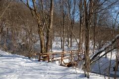 Jeden z nowych mostków drewnianych nad potokiem Świerzówka. Mostki powstały w związku z otwarciem niedawno oddanego do użytku szlaku rowerowego przez dolinę Świerzowej i pieszej ścieżki edukacyjnej.