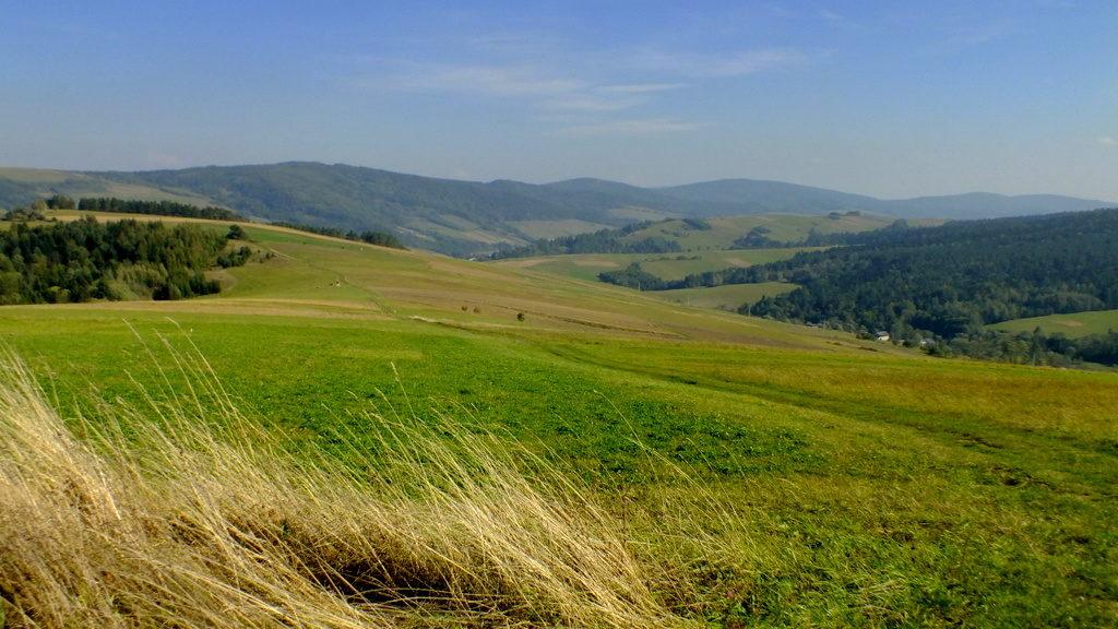 Widok na pasmo Łysej Góry z Polaną i Danią.
