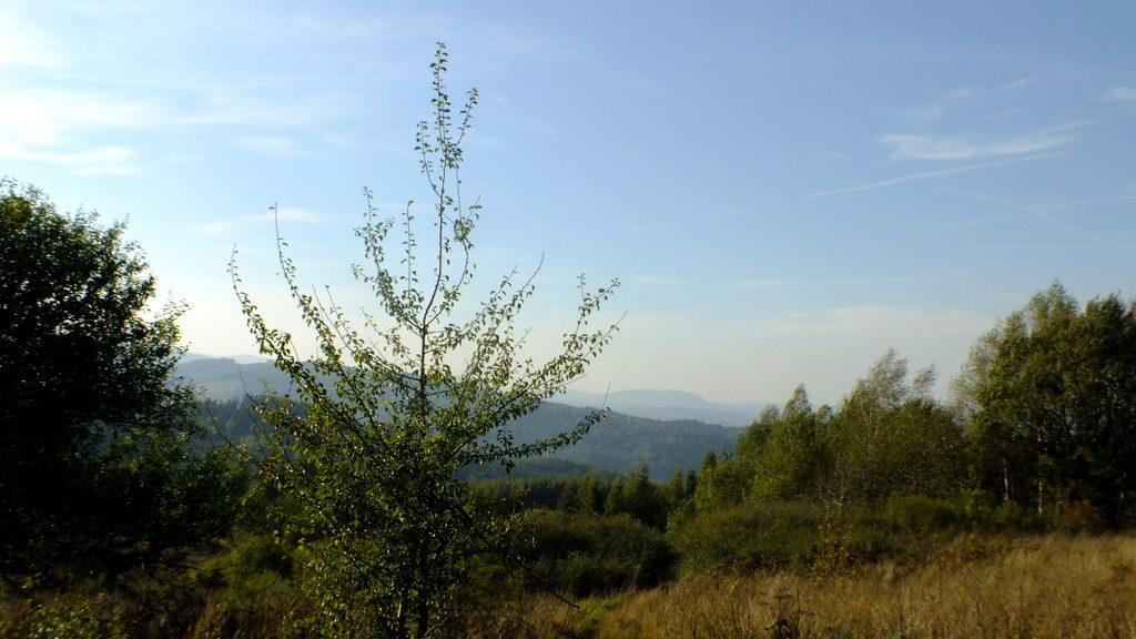 Uroczysko Srebrne pod Goleszem w drodze do przysiółka Podgóry.
