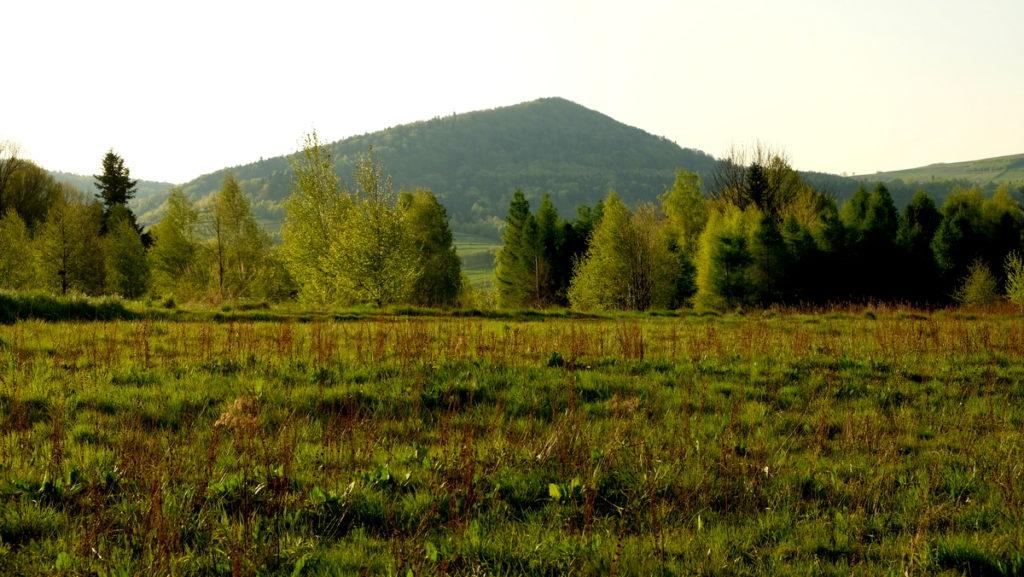 Chełm (528 m n.p.m.) Widok z podejścia na wzgórza nad Stępiną.