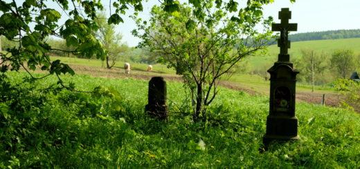 Ożenna - zaniedbany cmentarz łemkowski