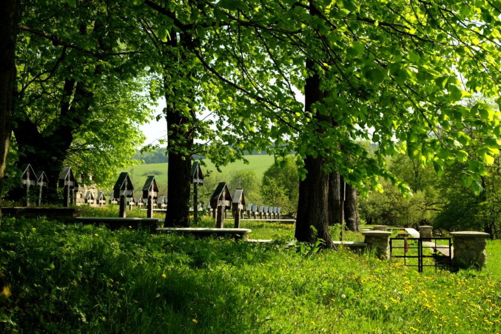 Widok na cmentarz wojenny nr 3 - Ożenna.