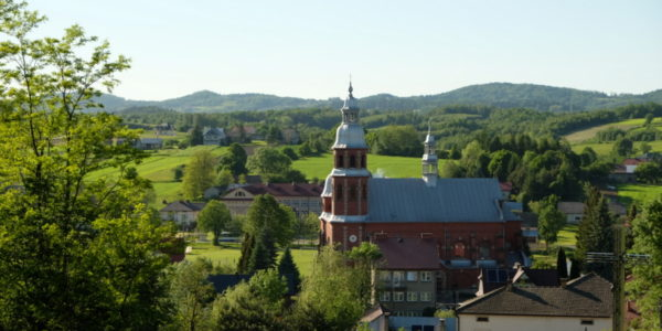 Widok na Ołpiny z kościołem p.w. Wniebowzięcia NMP zbudowanym z cegły w latach 1925-1933 w miejscu spalonego w 1915 r., drewnianego powstałego w 1349r. W tle wzniesienia Pasma Brzanki.