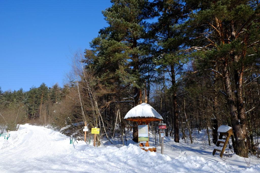 Granica Magurskiego Parku Narodowego w okolicach Świątkowej Wielkiej.