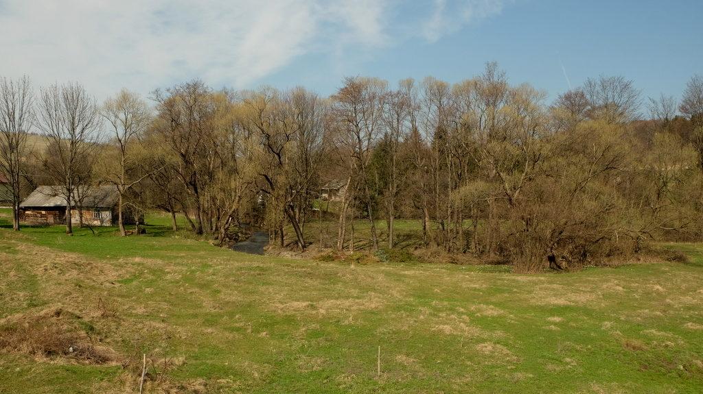 Wiekowa chyża i meander potoku Bednarka w Bednarce (wsi).