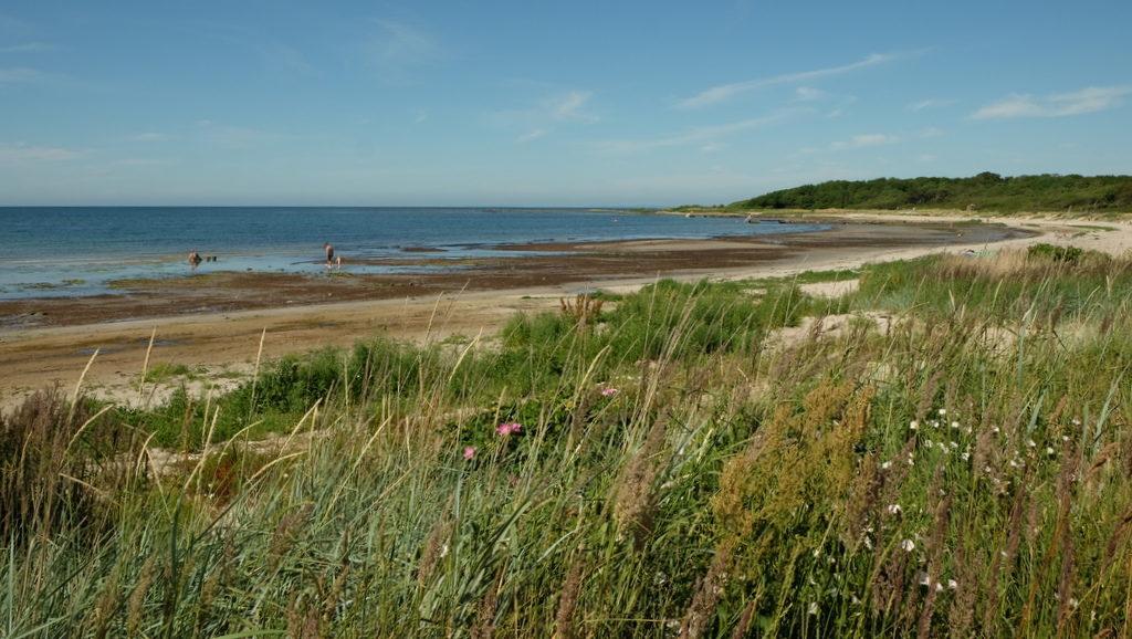 Prawie pusta plaża w północnych rejonach Torekov.