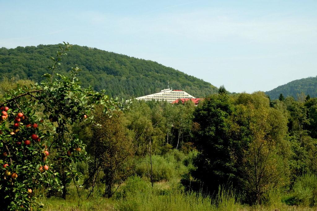 Wysowa - Zdrój. Ośrodek Uzdrowiskowy Biawena.