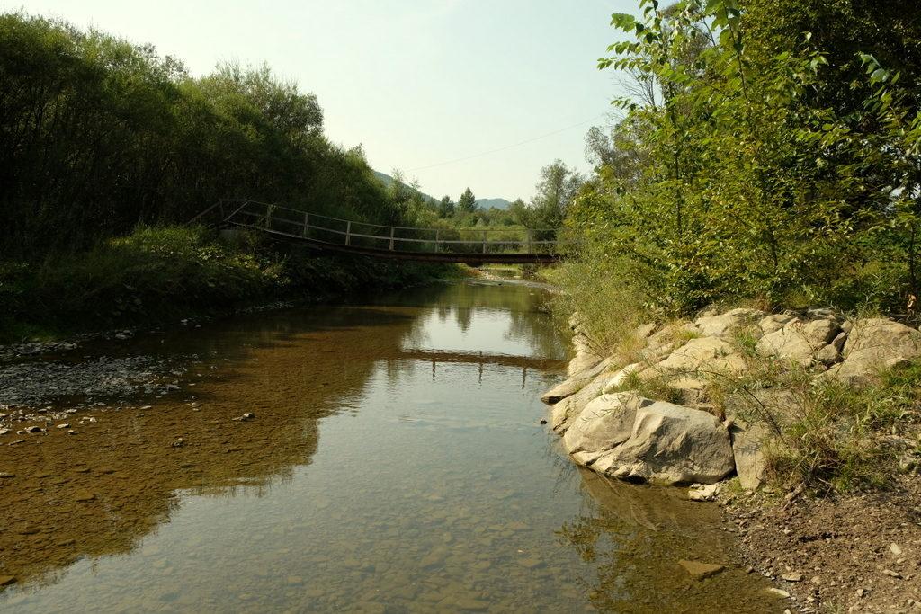 Zdynia (dopływ Ropy) w okolicach Kwiatonia.