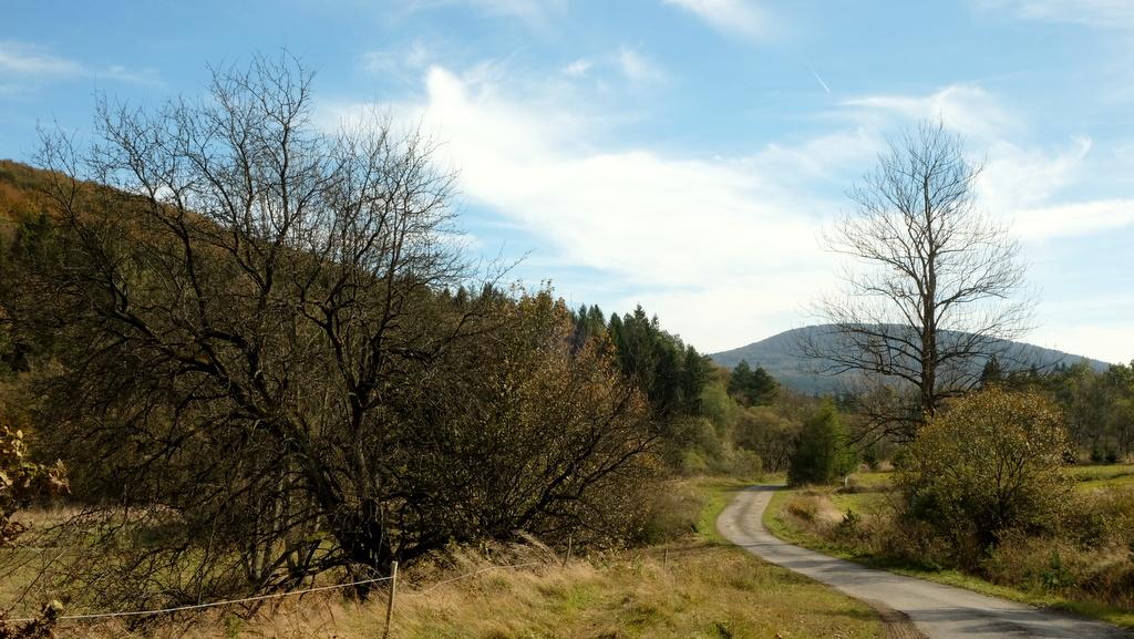 Droga w stronę Regietowa Wyżnego. W tle Jaworzyna Konieczniańska.