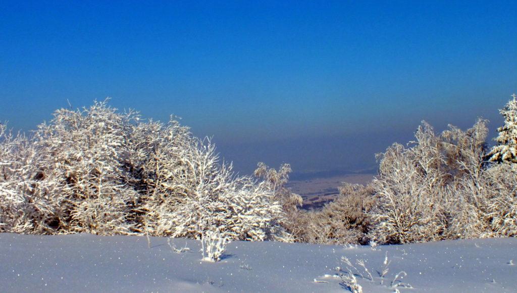 Widok na Pogórze Jasielskie z Łysej Góry.