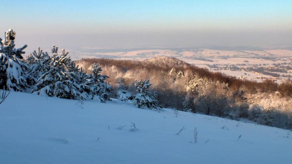Szczyt góry Golesz (456 m n.p.m.) widok z zejścia z Grzywackiej