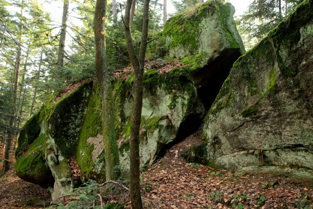 Zaginione Skałki. Grupa wychodni skalnych rozrzuconych w lesie na wierzchowinie na przestrzeni ok. 200 m.