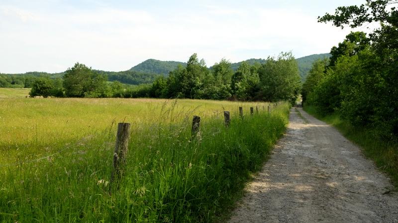 droga na skraju wsi