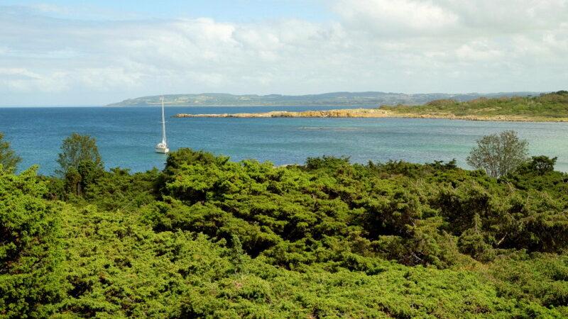 widok z wyspy na żaglówkę na morzu