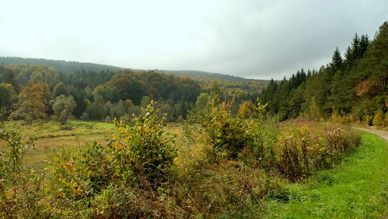 tereny nieistniejącej wioski łemkowskiej.
